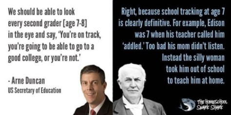 Institutional Stupidity