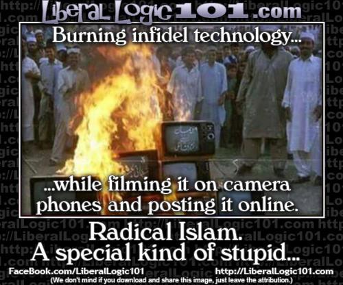liberal-logic-101-2748-500x416