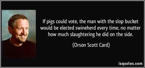Pigs Vote