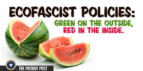 Ecofacist