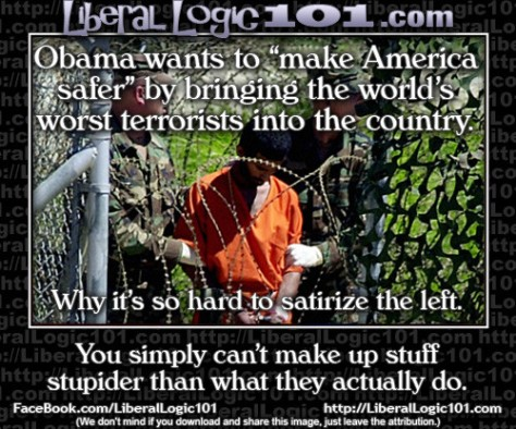 liberal-logic-101-3846-500x416