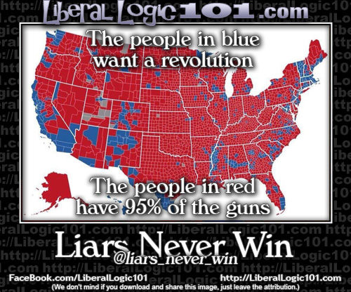 liberal-logic-101-5166-500x416