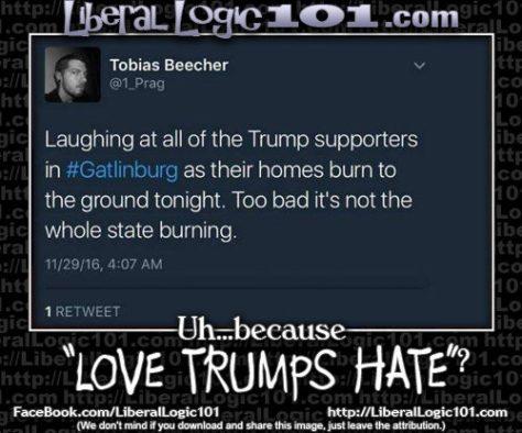 liberal-logic-101-5231-500x416