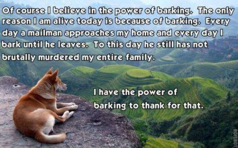 funny-dog-of-course-i-believe-in-the-power-of-barking