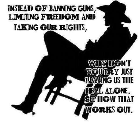 instead_of_banning_guns_limiting_freedom_and_taking_our_rights_why_dont_you_try_just_leaving_us_the_hell_alone
