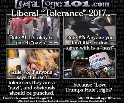 liberal-logic-101-5476