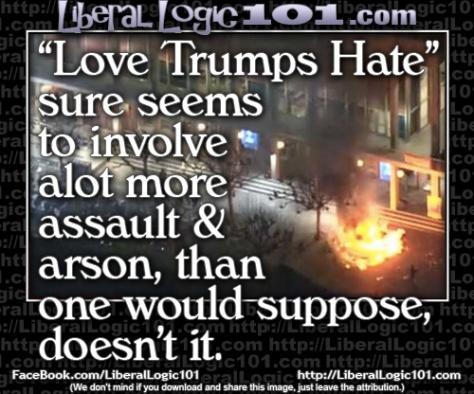 liberal-logic-101-5509