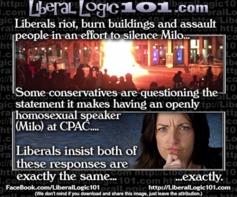 liberal-logic-101-5564